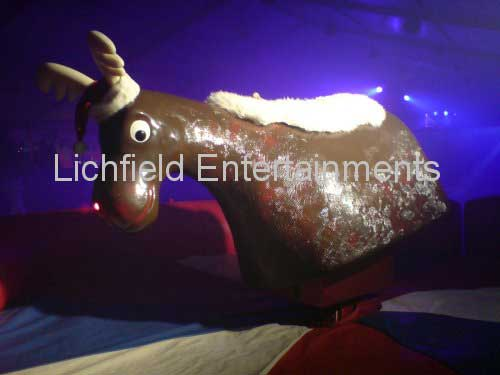 Rodeo Reindeer Ride for hire. Perfect for Christmas parties